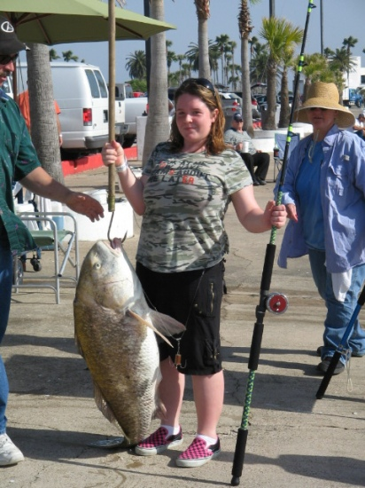 My 14 yr old daughter caught this 48 pound Black Drum in Galveston Tx.