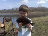 bluegill cuaght in private pond pond by my son dalton. gave him a great fight he loves to go fishing and i love to watch him catchem he makes me proud.