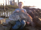thji drum was caught by my son jesse in the early morning hours of feb 27 2011 in louisiana , on one of the gulf inlets of the miss. River. It was approx, 40 lbs. And caught on shrimp. He gave my son the best fight he had ever experienced . He landed the big boy on a medium rod with 20 test wow what a catch huh