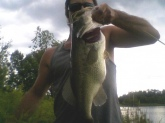 Caught in Medina Ohio 2010 mid-summer on one of my homemade favorites. I didn't weigh this one but its probably about 6 1/2 lbs. or better. Weighing many fish I'm within a few ounces when I guess before I weigh them. They had already spawned out so that bulge is a result of good eatin.