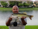 5 1/4 Lbs. large mouth Bass cought in cutler Bay Fl. On a black cray fish on a slow retrive.