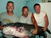 Thought this would be an interesting story about my roommate catching a world record blue catfish.   Nick Anderson, a 29 year old high school football coach at Kinston High School from Greenville, NC caught a world record setting blue catfish on Saturday June 18th, 2011 at Kerr Lake in Virginia.  The fish weighed in at 143 lbs.  The previous record was caught in Missouri in July of last year. The fish fought for a staggering 45 minutes.  Anderson was fishing with his father to celebrate fathers day when the fish was landed.   Thanks!   Ryan Gieselman