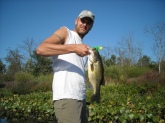 5.5 lb bass caught using buzz bait 10 mins after catching a 42 inch northern pike. Both in 2 ft of water in Michigan.