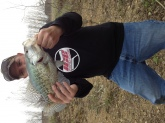 Big Crappie... 15 1/4 inch and 2.13lbs. Caught on Rebel Wee Tiny brown crawdad color.