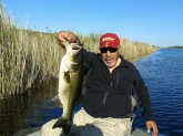 A week at Lake Okeechobee Florida Brother Henry lands the biggest large mouth Bass 10 lbs 4 ounces , what a vacation it was!