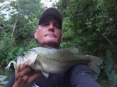Cibolo Creek, 24 Jun 14. Zoom white pearl swim shad, 5/0 hook, 6# test.